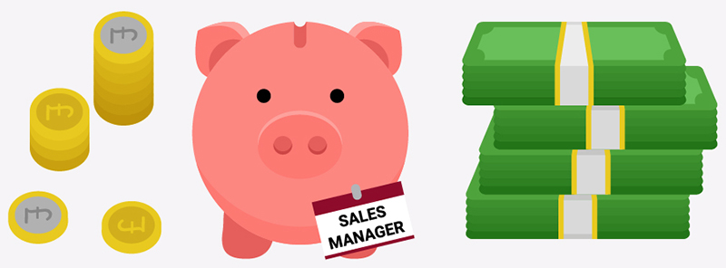 sales manager salary